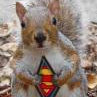 SQuiRRell_