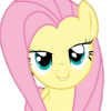 Yellow_Pony